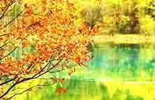 【10月】【稻城遇姑娘】成都、稻城、亚丁四姑娘山、丹巴环线双飞八日游