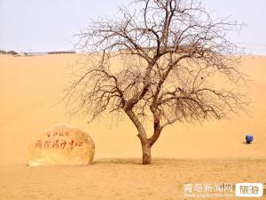 【3月】玩美宁夏-银川、华夏西部影视城、沙坡头、水洞沟双卧5日游