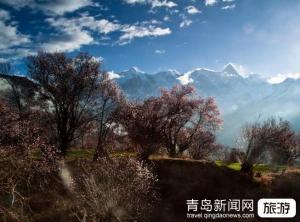 【4月】东北哈尔滨、长白山、长春、沈阳双飞五日游