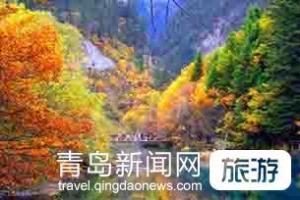 【4月】国宾礼遇 成都、都江堰、九寨沟、黄龙双飞6日游
