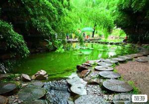 【五一】泰州全景 李中水上森林 泰州老街 夜游凤城河 溱湖湿地大巴二日游