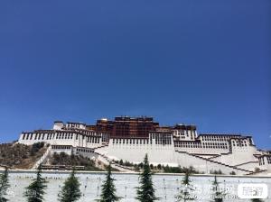 【4月】山东成团西藏喜马拉雅布达拉宫大昭寺卡定沟瀑布鲁朗林海羊卓雍错双飞8日游