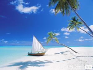 【6月】青岛成团纯净海洋海南三亚玉带滩呀诺达西岛大小洞天天涯海角三亚湾双飞6日游