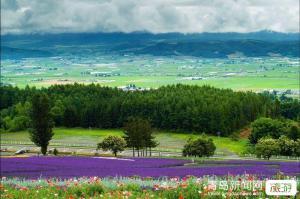 【5月】贵州恋歌贵阳黄果树、马岭河大峡谷、万峰林、乌蒙大草原双飞5日游