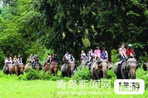 【6月】青岛成团幸福版纳——云南、昆明、西双版纳双飞6日游
