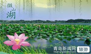 【7月】台儿庄古城、大战纪念馆、滕州微山湖红荷湿地经典二日游