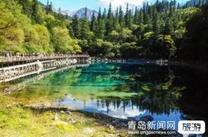【7月】灵秀四川-成都峨乐金爵+都青熊猫纯玩双飞六日游