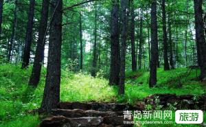 【8月】【寻味长白山】大连+长白山双船深度七日游