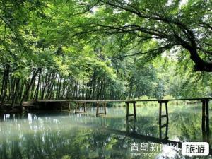 【9月】我在贵州等您贵阳黄果树瀑布天星桥陡坡塘瀑布苗寨小七孔青岩古镇双飞5日游
