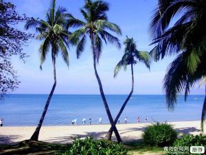 【10月】【纯净海洋】海南三亚西岛天涯海角大小洞天呀诺达博鳌玉带滩双飞6日游