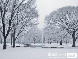 【1月】【雪乡至尊五星】哈尔滨亚布力5S滑雪场雪乡梦幻城堡冰雪童话雪地温泉5日游
