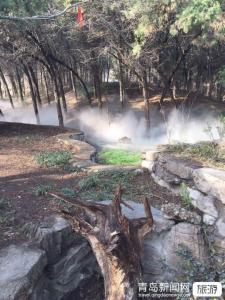 【春节】威海滴水湾温泉、烟墩角天鹅湖、海草房二日游
