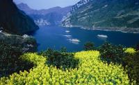 【11月】【九寨旅行日记】成都、熊猫基地、松洲古城、九寨沟、黄龙双飞6日游