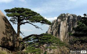 春节-杭州往返.黄山、千岛湖、宏村、双古街、杭州、双飞4日游