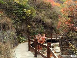 春节-登高拜寿-云门山 沐浴-青州江南温泉 博物馆二日游
