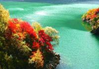 春节—九寨旅行日记成都、熊猫乐园、松洲古城、九寨沟、黄龙双飞6日游